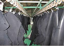 乾燥 Drying